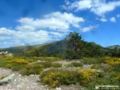 Siete Picos[Serie clásica]:Sierra del Dragón;viajes para grupos senderismo zaragoza material sende